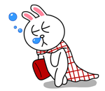brown_and_cony-46